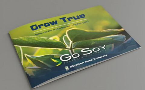 Go Soy brochure on gray background